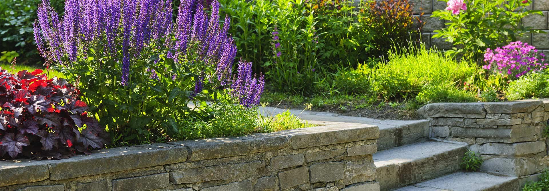 création de jardin à votre image grâce à un paysagiste confirmé à Sérifontaine